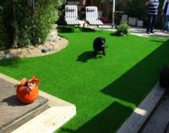 Artificial Grass - Just What The Dog Ordered