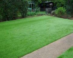 A Simple Kwality Artificial Grass Job