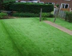 Artificial Grass Simply Works