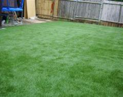 Another view of this Artificial Grass Edge