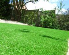 A closer look at the artificial grass