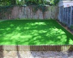 Artificial Grass in the sunshine