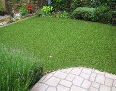 Artificial Grass and a Patio Scene